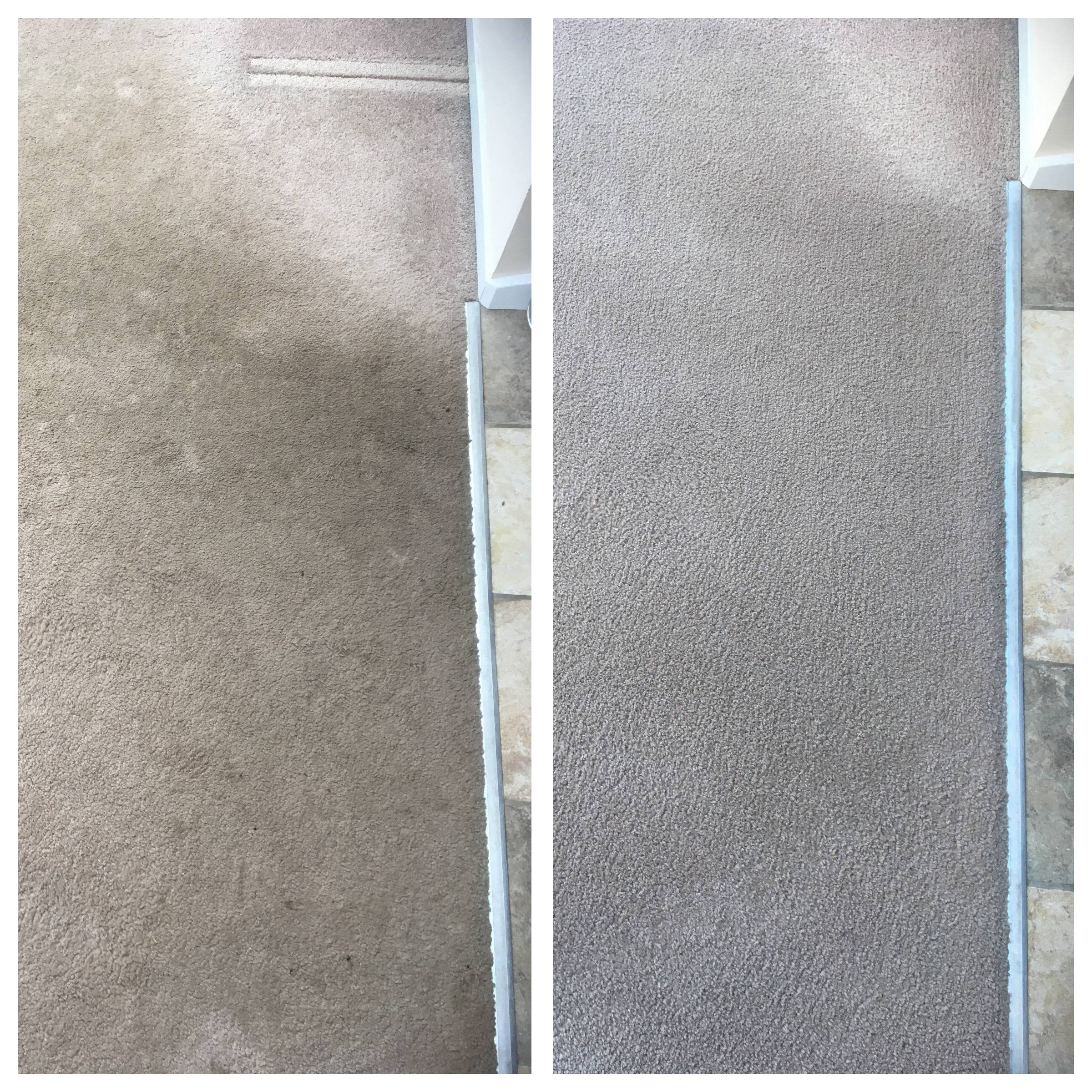 Domestic Carpet Cleaning