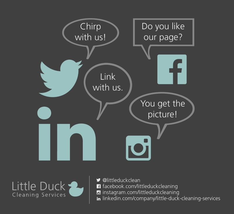 Contact Little Duck for Upholstery Cleaning Services wherever you are in Carlisle, Cumbria or the Borders