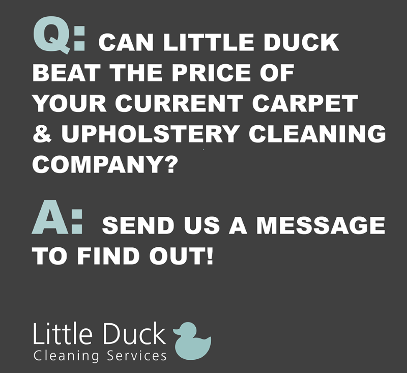 Contact Little Duck Cleaning Services in Carlisle to get a pleasant surprise about carpet cleaning costs.